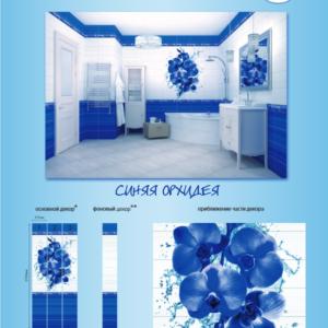 VENTA синяя орхидея